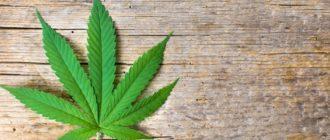изготовление без цели сбыта наркотических средств в крупном размере